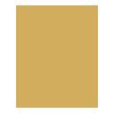 Logo-1-128x128_gold